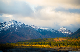 Alaska Mountains with forest next to water