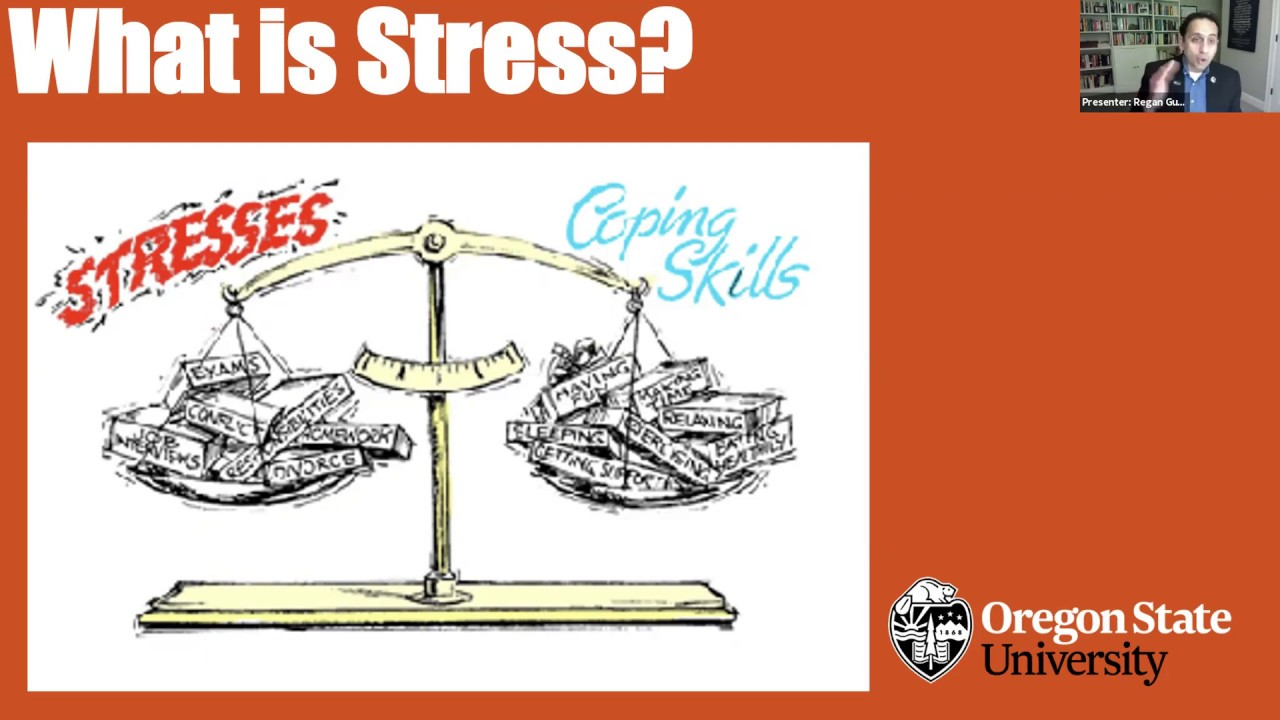 """""""What is Stress"""" text with image of scale with one side 'stress' and the other side 'coping skills', screenshot of zoom meeting"""